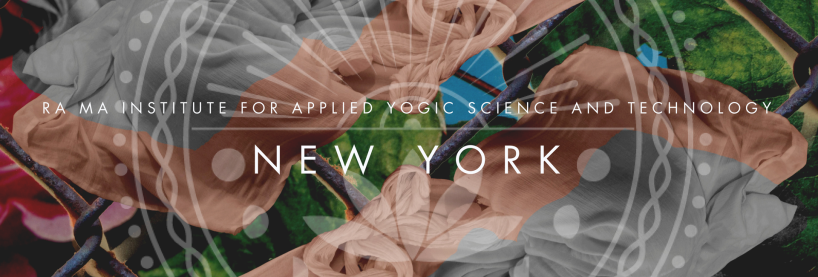 new-york-webpage-top-banner